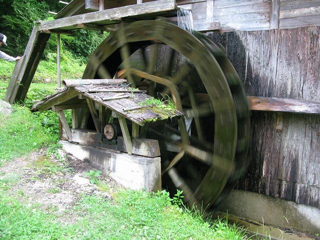 旭地区の水車小屋を見せてもらいました 視察です 水苔がついて風格か出ていました。